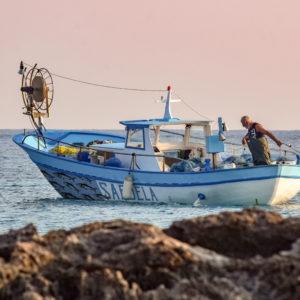 Covering sardine d'un bateau