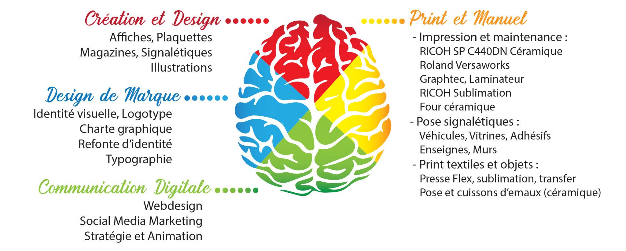 Image d'un cerveau avec les compétences artistiques de Rokin